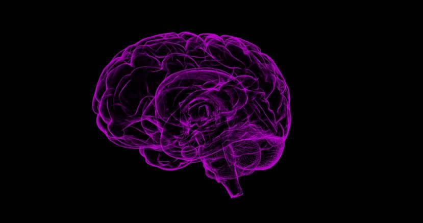 patente ed epilessia quali sono le limitazioni conducenti gruppo 1 e gruppo 2 patenti a b c d be cqc b1 a1 cap k